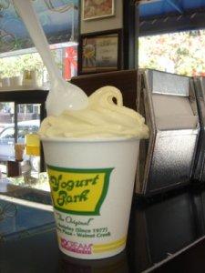 yogurt prk