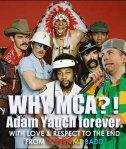 why mca